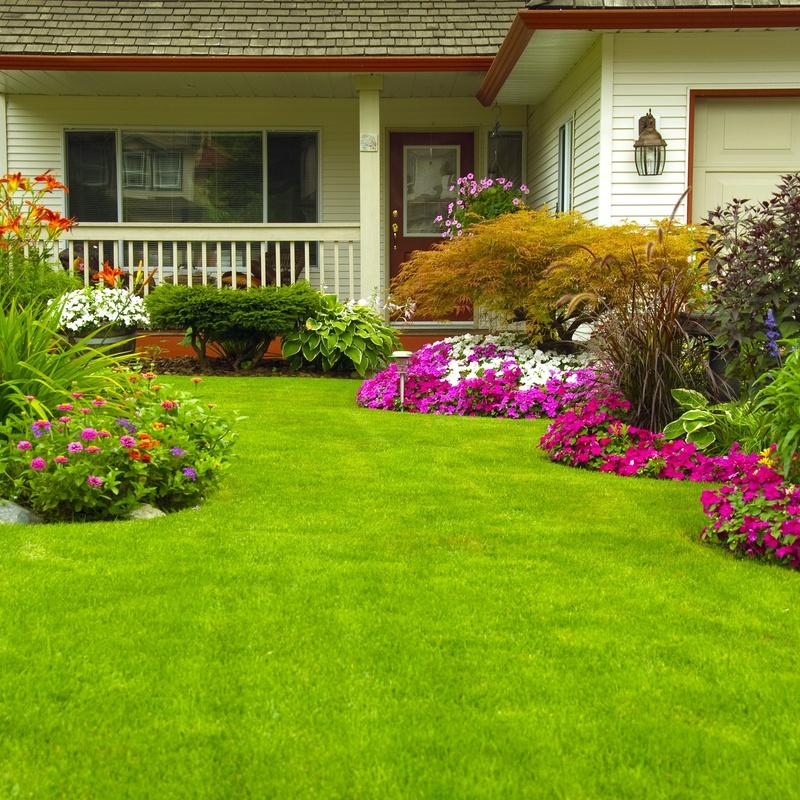 Mantenimiento de jardinería: Servicios de Servicios Técnicos Liderman