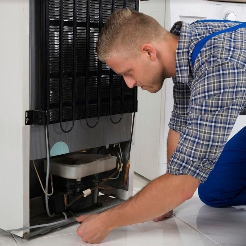 Reparación de frigoríficos: Servicios de Briotec