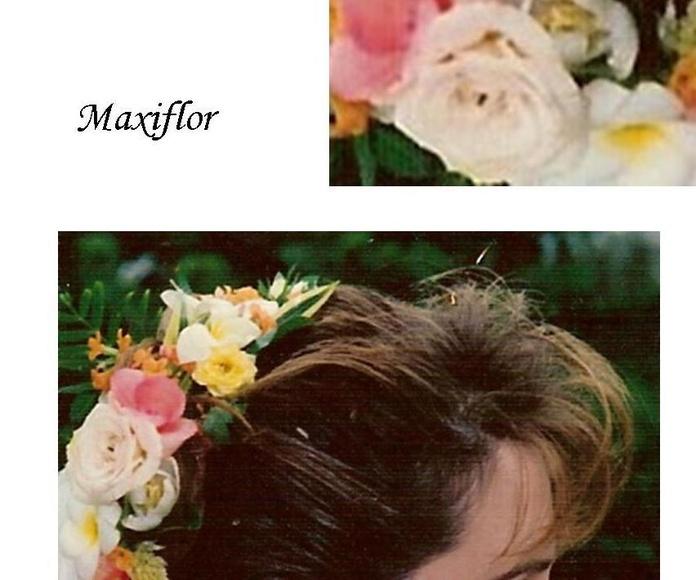 Tocados de novia naturales : Catálogo  de Floristería Maxiflor