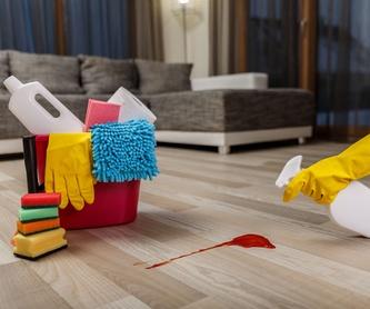 Limpiezas de comunidades de propietarios: Limpiezas en general de Limpiezas Lipamas