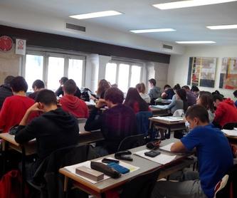 CURSOS DE VERANO 2020 : Nuestros Cursos de Instituto de Orientación Educativa JM