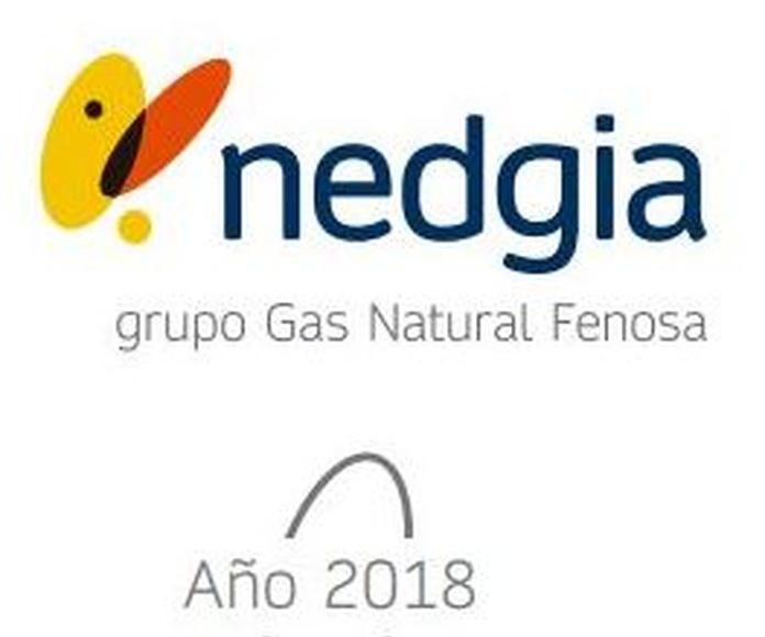 Altas de Gas Natural, Nedgia en Madrid y Toledo