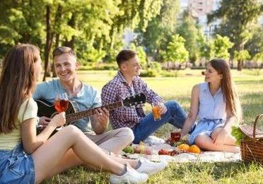 Sa Brisa de picnic