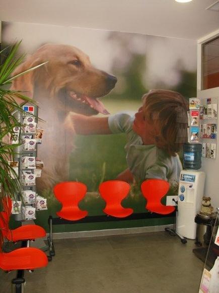 CLINICAS VETERINARIAS Y TIENDAS DE ANIMALES: Instalaciones de Europea de Estanterías
