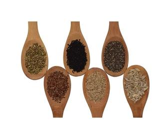 Plantas: Productos de Abonos Concar S.L.