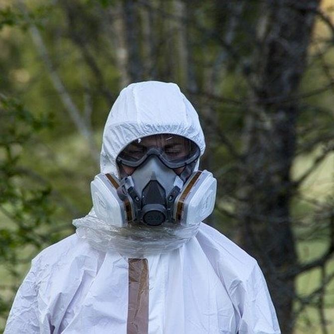 El origen del amianto