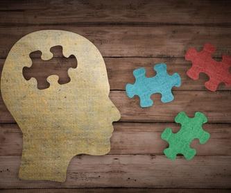 Psicología clínica: Servicios de JANIRA LUBERIAGA MEDINA