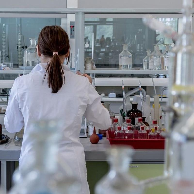 Laboratorio de piensos: Servicios de Ainprot, S.A.