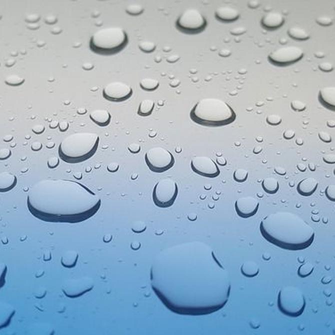 Características de una mampara de ducha