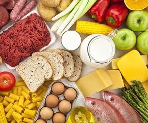 Distribuidores de alimentación en Toledo
