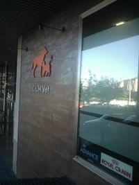 Consulta veterinaria en Coruña - C.L.H. Vet