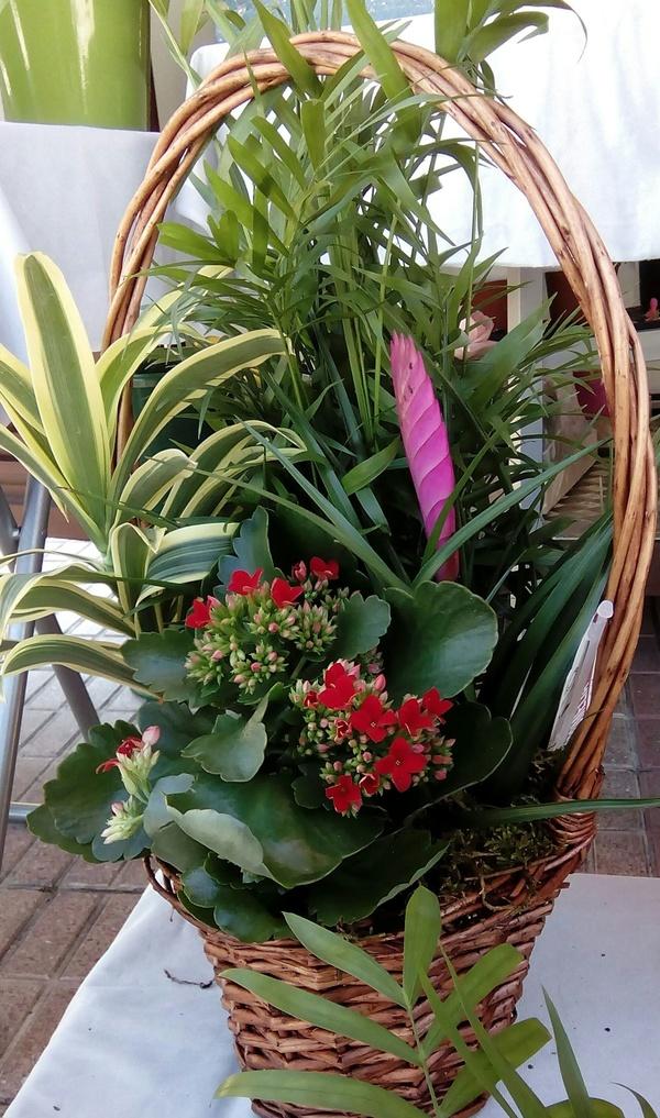 Especial día de la madre: Arte floral de Isabella Arte Floral