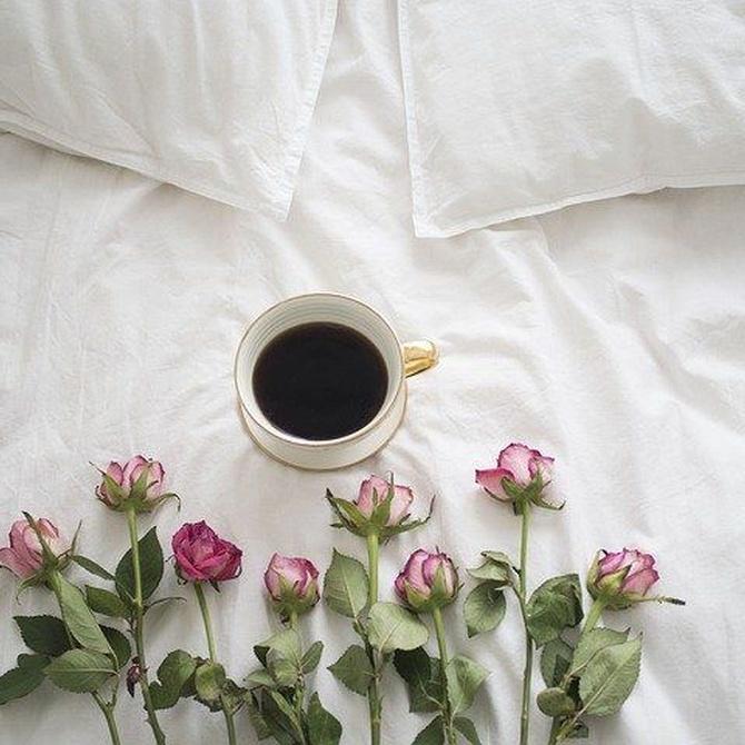 5 ventajas de tener una cama de invitados