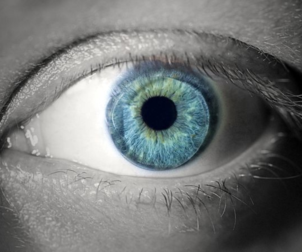 La importancia de cuidar la vista