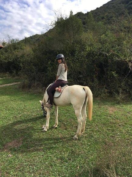Actividades infantiles de equitación