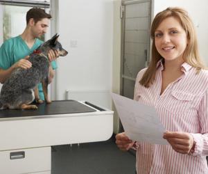 Radiografías y ecografías