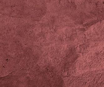 Colocación y restauración de parquets: Servicios  de Pintures Floquet, S.L.