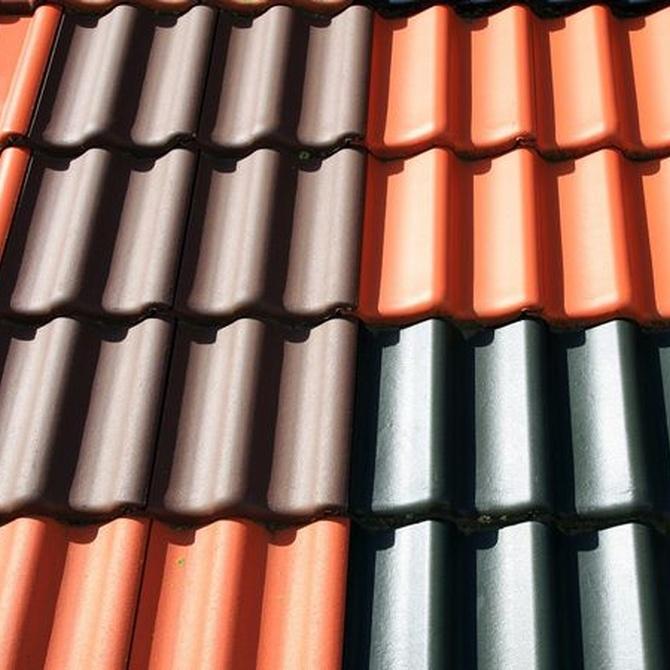 Diferentes tejas para tu casa (I)