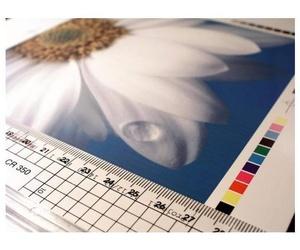 Copisteria digital con calidad láser