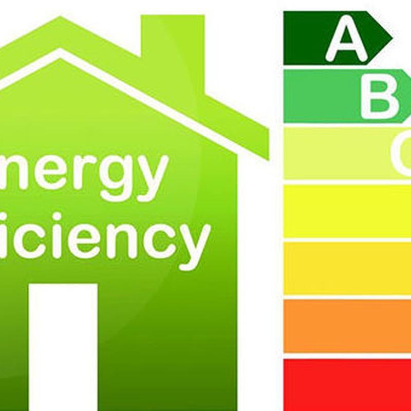 Eficiencia Energética : Productos y servicios de Nuevo Estilo