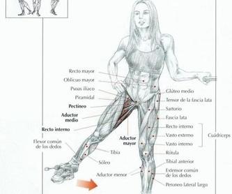 Liposucción: Intervenciones de Dr. Vila Moriente, J.L. CIRUJANO PLASTICO