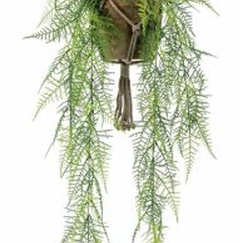 Planta decorativa techo 420808: ¿Qué hacemos? de Ches Pa, S.L.