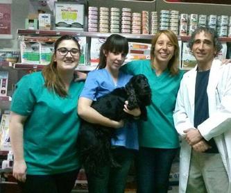 Ecografía: Servicios de Clínica Veterinaria Ricardo Díez Reyero