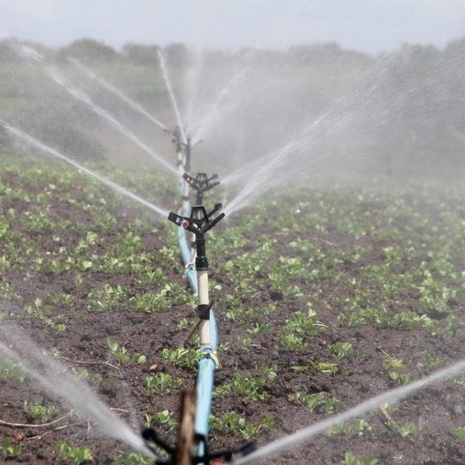 La necesidad de tratar el agua de riego