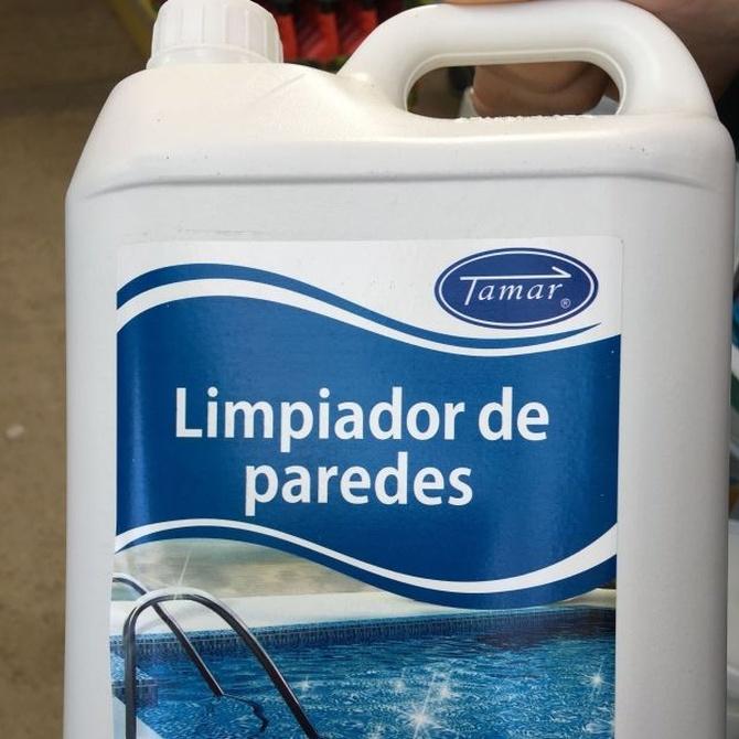 Limpia las paredes de tu piscina