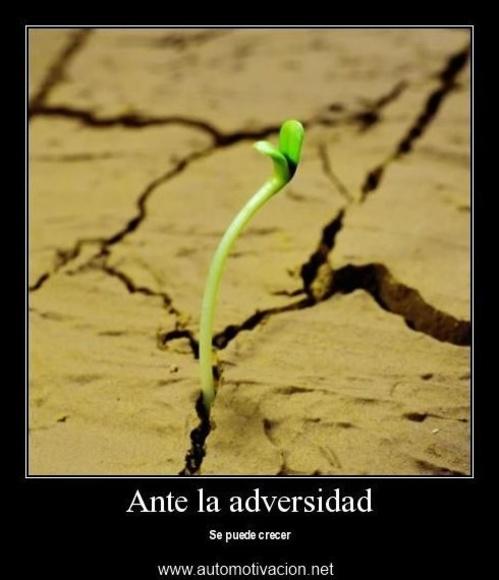 Ante la adversidad se puede crecer