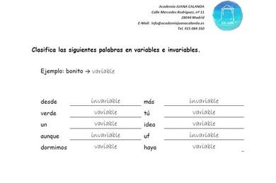 Palabras variables e invariables: Solución