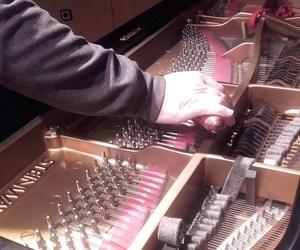 Armonización de pianos en Málaga