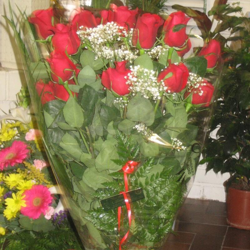 Rosas: Catálogo de El Jardín de Churruca