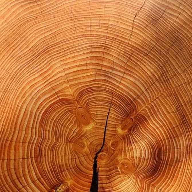 La madera en casa, una gran aliada