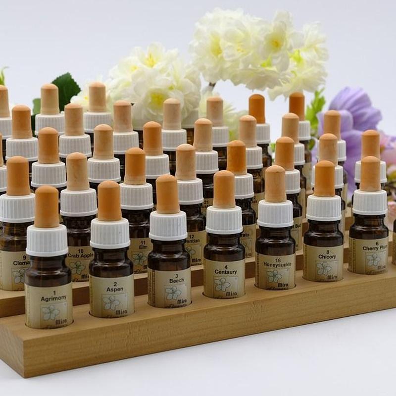 Plantas medicinales: Servicios de Herbolario Hierbabuena