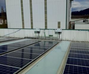 Solarfam Ingenieria, instalación de fotovoltaica para la empresa Piensos Saioa Navarra