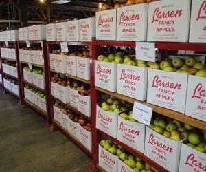 Sistema BIOKKER para el sector hortofrutícola
