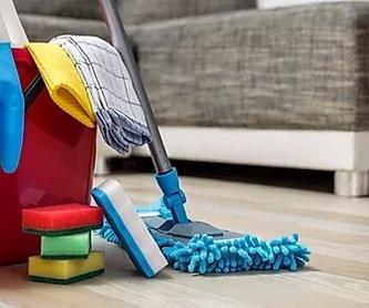 Nebulización de desinfectante: Tratamientos de Anfe Limpieza y Desinfección