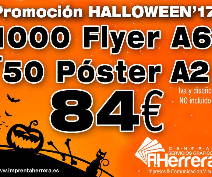 1000 Flyer A6 + 50 Póster A2