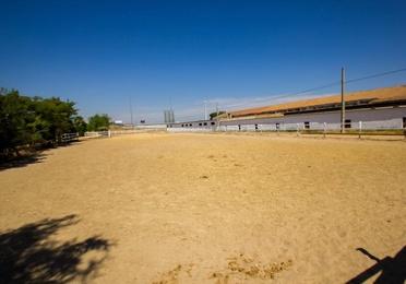 Alquiler de cuadras Sevilla