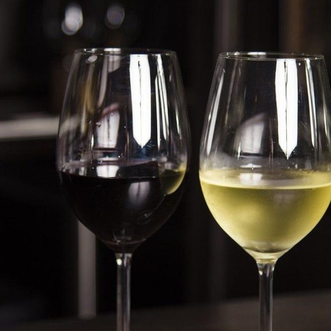 Pautas para aprender a catar un vino