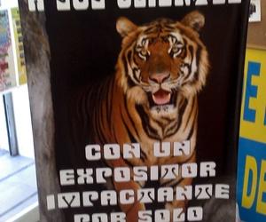 Banner  Expositor X-Banner de 150 x 80, podras cambiar tu mismo tus promociones en segundos y por solo 45 €