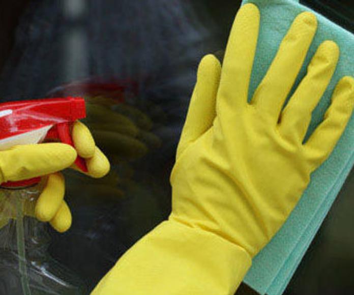 Limpieza de cristales: Servicios  de Multiservicios Elite