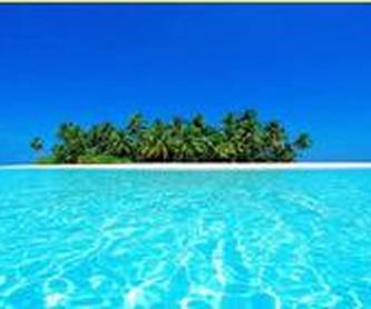 Especial Buceo: Ofertas de Viajes Evasión