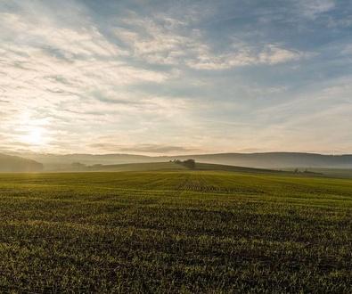 Impuesto sobre los Gases Fluorados de Efecto Invernadero