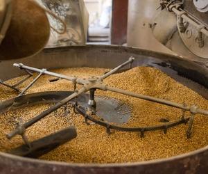 Proceso de elaboración del gofio