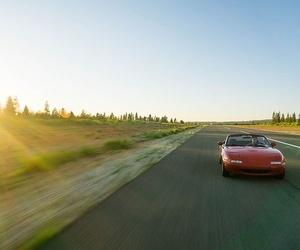 El color de tu coche y la seguridad vial