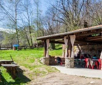 Tour Covadonga y los lagos: Actividades de El Trasgu La Fronda