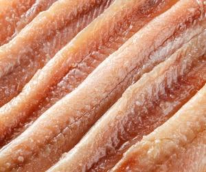 Elaboración de pasta de anchoas en Santoña
