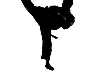 Kenpo Karate Las Rozas